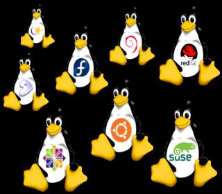 Linux flavours